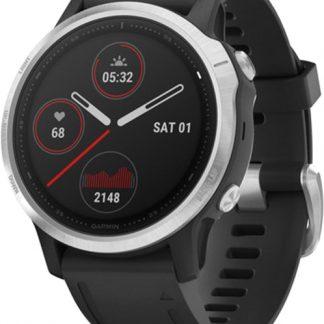 i7 shop - купить Спортивные часы Garmin Fenix 6S Silver with Black Band (010-02159-01)